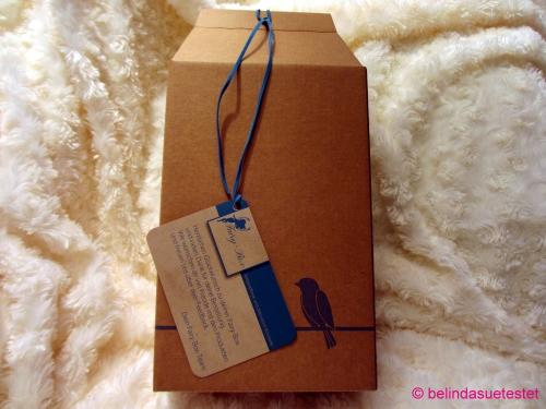 fairy_box_august13_01