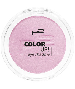 9008189324406_COLOR_UP_EYE_SHADOW_310