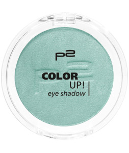 9008189324437_COLOR_UP_EYE_SHADOW_320