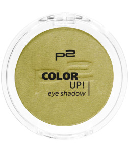 9008189324499_COLOR_UP_EYE_SHADOW_340